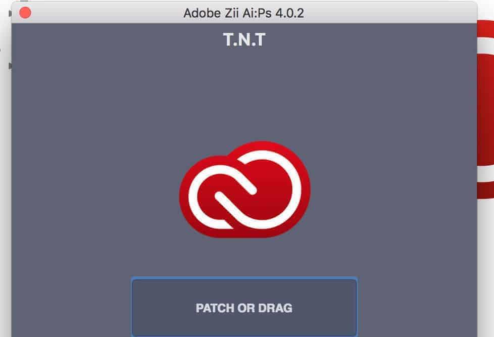 Adobe Zii 4